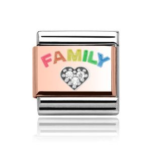 Charmlinks Rose Gold on Silver Family Charm
