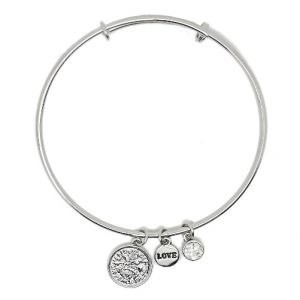 Sentiment Silver Lucky Six Pence Bangle